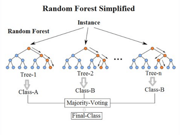 Algoritmo Random Forest