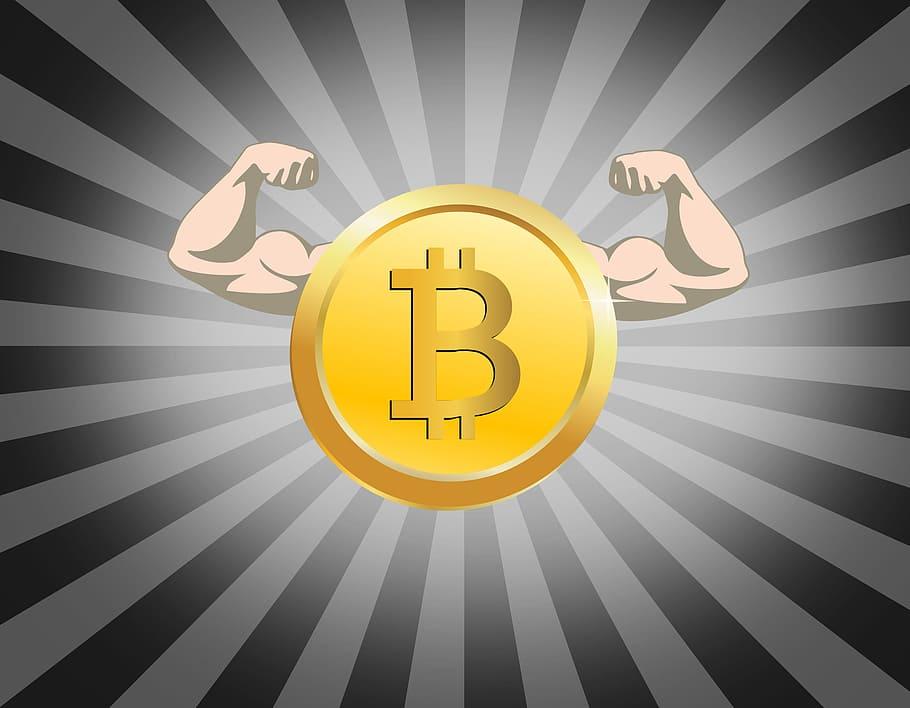 bitcoin nei termini della loyman