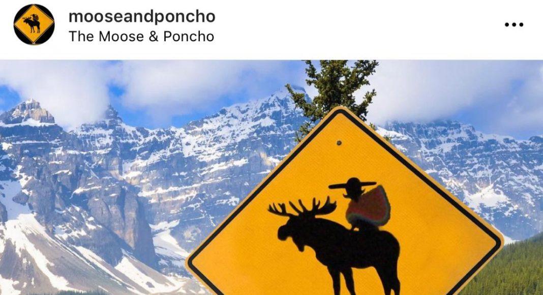Emprende, cultura y gastronomía: the moose and poncho