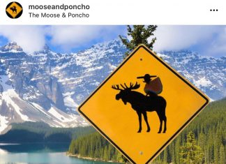 Emprende, cultura y gastronomía: the moose and poncho