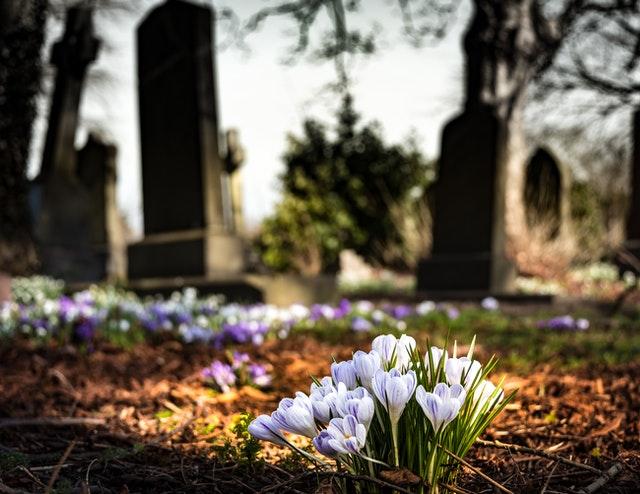 Turismo cementerial: los cementerios que debes visitar