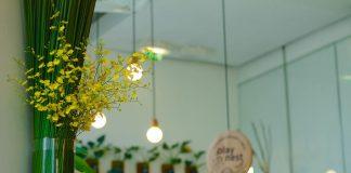 light-bulb-interior-design-flower-plant