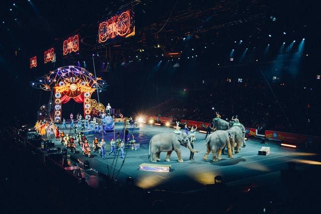 El circo: el show debe continuar