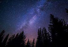 estrellas