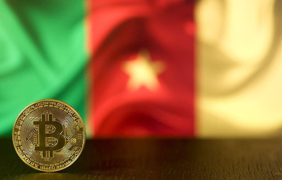 bitcoin-btc-money-cryptocurrency-currency-blockchain