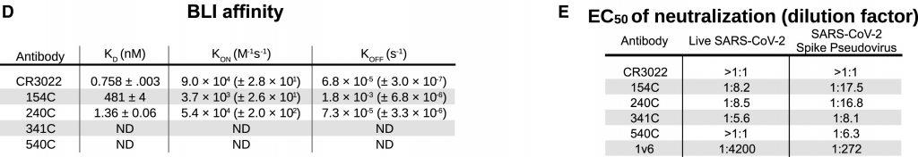 cell Reports - Cinética de unión y pruebas funcionales de anticuerpos específicos de Spike contra el RBD del SARS-CoV-2
