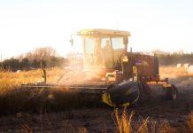 Revolución Agro