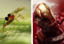 ALIEN inspirado en la Avispa parasitoide
