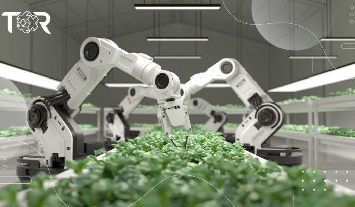 La IA revoluciona al sector agrícola, descubre cómo